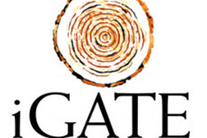 Igate-Placement-Papers