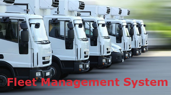 Fleet management system for enterprise